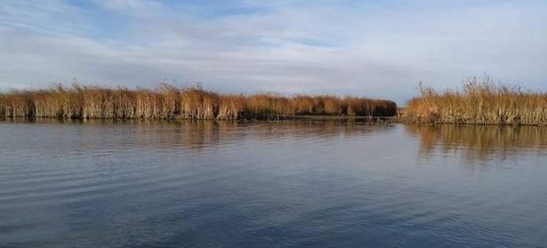 Астраханская рыбалка весной