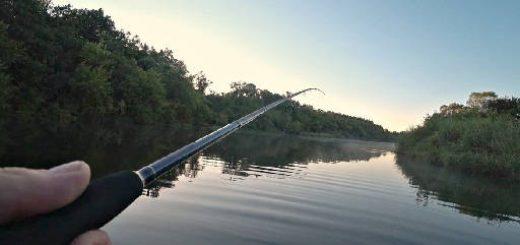 Рыбалка на утренней зорьке