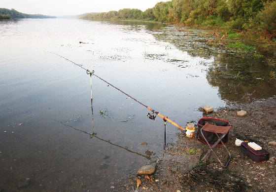 Фидер на мелководной реке
