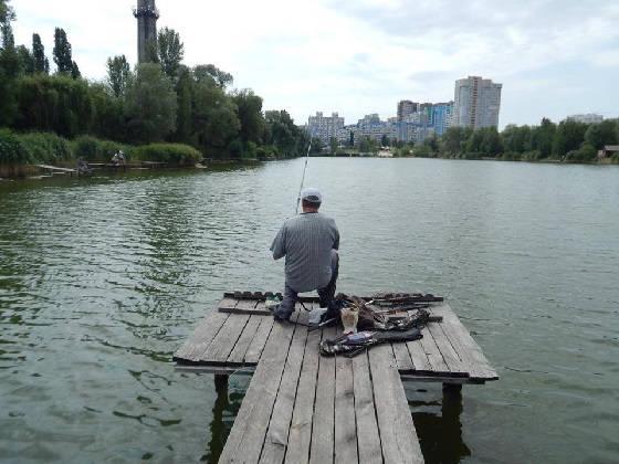 Крупный карась на фидер в центре Киева