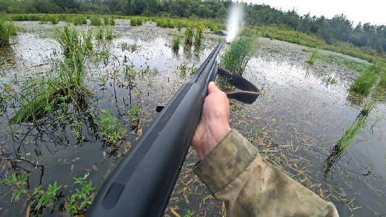 Охота весной по лицензии с подхода