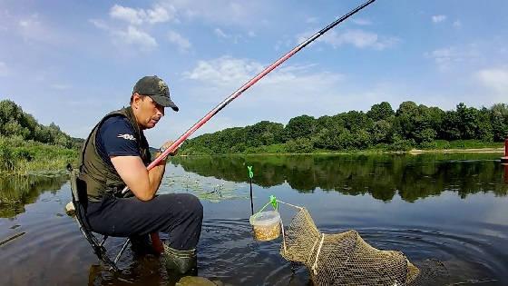 Рыбалка на маховую удочку и донку