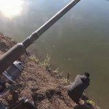 Рыбалка на прорве