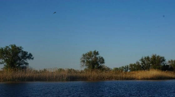 Весенняя рыбалка в Астрахани 2021