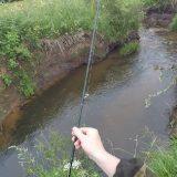 Рыбалка на лесной МИКРОРЕЧКЕ
