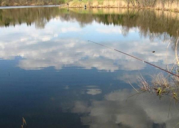 Весенний карась на поплавок