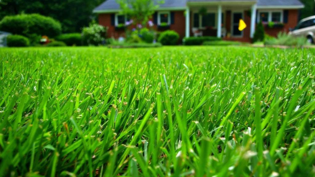 универсальный газон купить