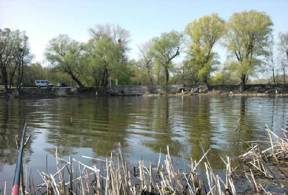 Рыбалка на крупного карася весной на заливах реки Днепр