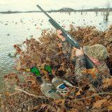 охота в поле с манком