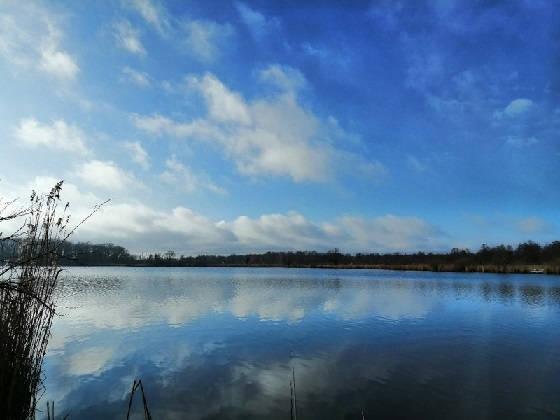 сезон поплавочной ловли