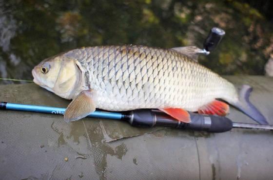 Рыбалка на Кудьме ранней весной