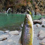 Рыбалка в Дагестане: Сулакский каньон