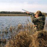 Популяризация охоты