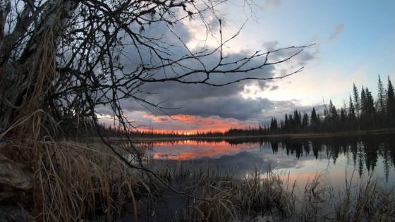 Рыбалка с ночевкой в таёжном зимовье