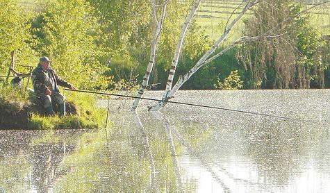 Рыбалка в Затопленных Деревьях