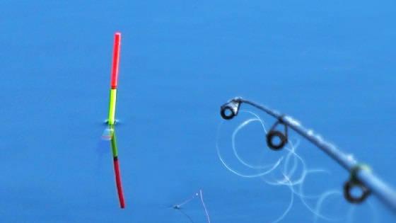 Рыбалка на поплавок по открытой воде