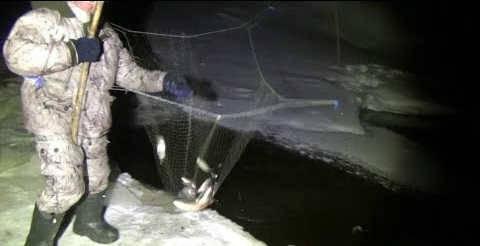 Рыбалка на паук ночью