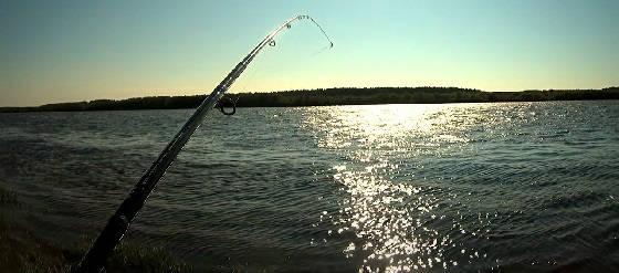 Фидерная Рыбалка в Ураган на Реке