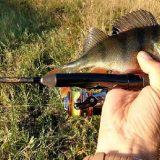 Спиннинг Crazy Fish Arion 742ULS