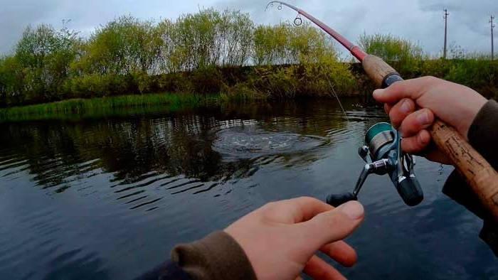 Ловля рыбы в мае на реке