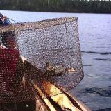 Рыбалка на Мордушку