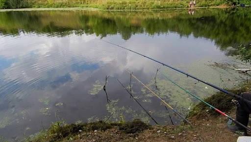 Рыбалка на лёгкую маховую удочку весной в протоке