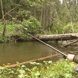 Рыбалка на небольшой таёжной речке
