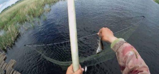 Рыбалка на паук на самодельном мосту