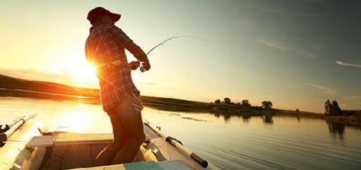 Клев Судака на Каждой Рыбалке