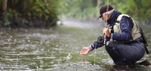 Рыбалка летом в дождь