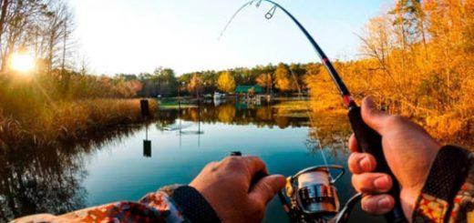 береговая рыбалка спиннингом