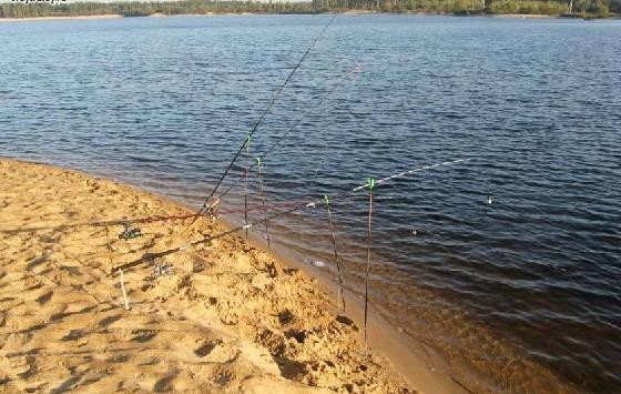 Рыбалка на сазана в ямах