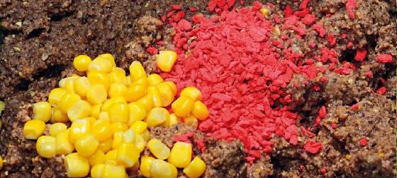Выбор цвета прикормки для рыбы