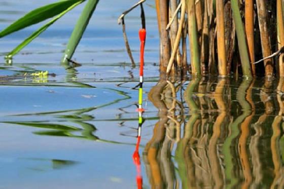 Рыбалка на поплавок перед дождем