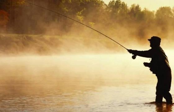 Рыбалка в затоне
