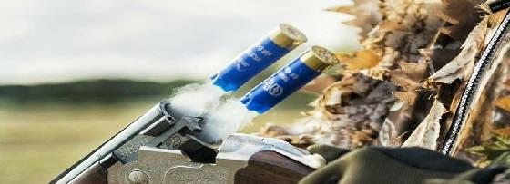 Эффективная дальность ружейного дробового выстрела