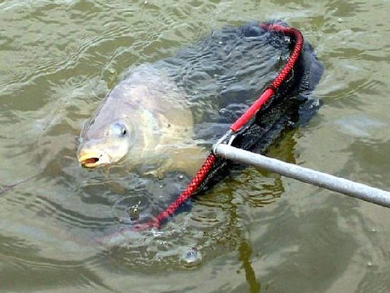 Рыбалка на Финском заливе: Ловля леща