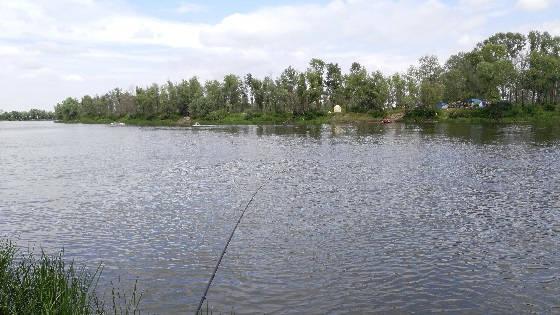 Рыбалка на фидер под Киевом на Десне