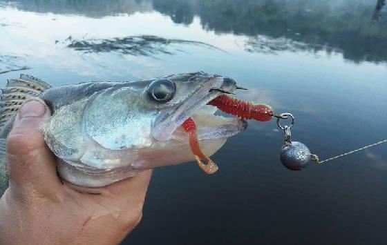 Рыбалка на спиннинг в начале лета