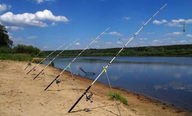 Рыбалка на Оке: Донки с Кормушкой