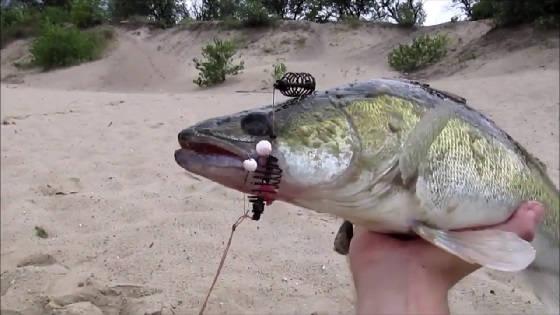 Рыбалка на поплавок в песчаном карьере