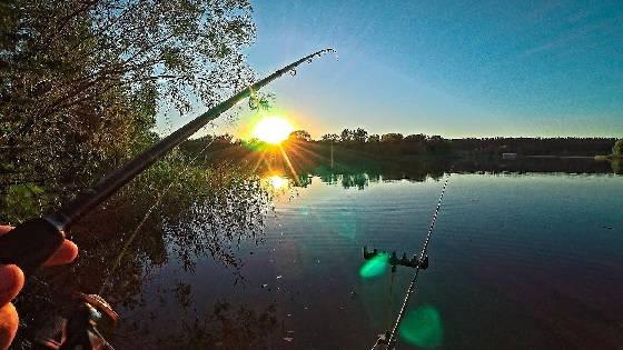 Рыбалка на фидер на острове