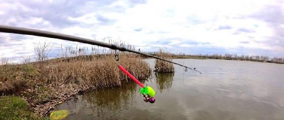 Рыбалка на пружины