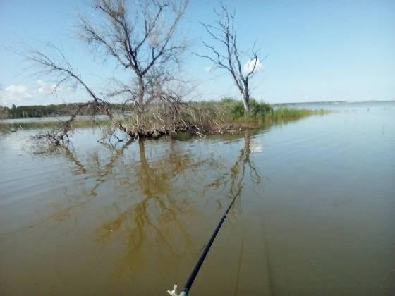 Рыбалка в ТОПЯХ