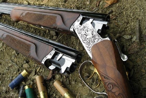 Ружьё ИЖ-27Е: Стрельба дробью