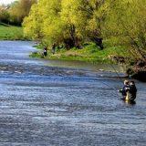 ловля рыбы на реке в конце лета