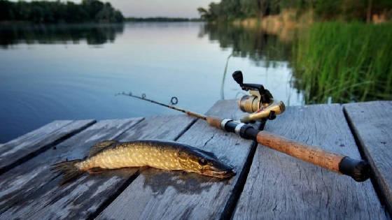 Любительская и спортивная рыбалка в Грузии
