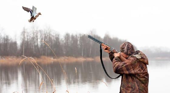 Охота на водоплавающую дичь в Омске