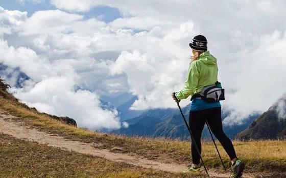 трекинговые палки для похода в лес и в горы