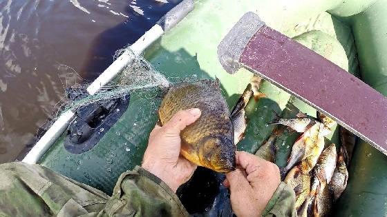 Рыбалка сетями на таежном озере